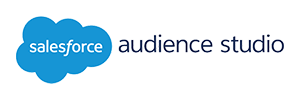 salesforce audience studio